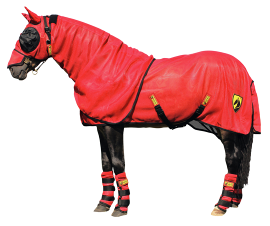 Horse Armor knockdown blanket M 175 cm (Insect shield)