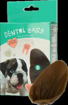 Dental Ears Small