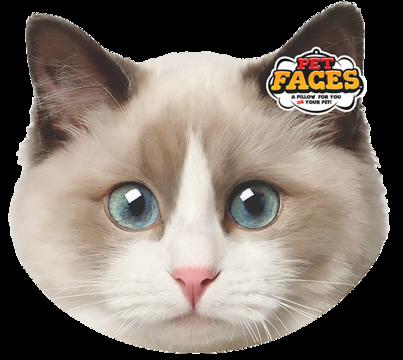 Pet Faces Ragdoll Cat