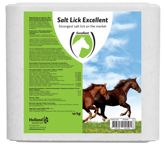 Salt Lick Excellent Horse
