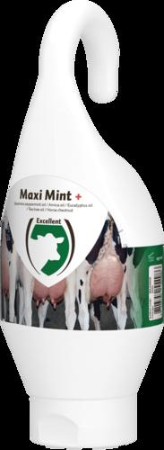 Maxi Mint Standing-/Hangingbottle