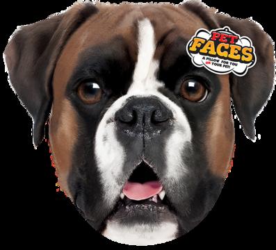 Pet Faces Boxer